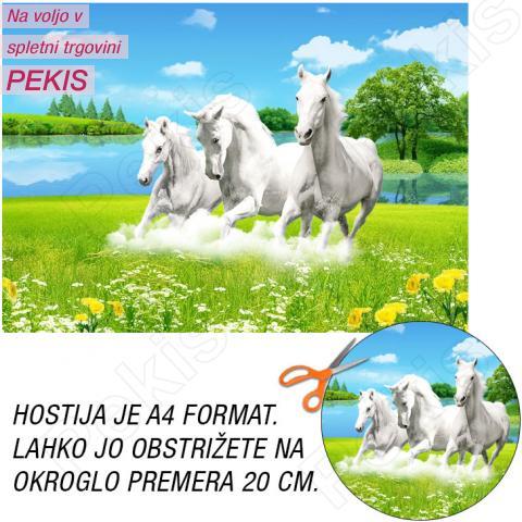 Hostija Konji, Beli A4