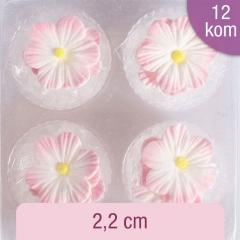Sladkorne roza marjetice, 12 kom