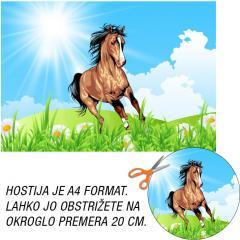 Hostija Rjav Konj A4
