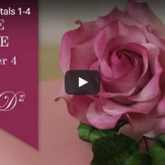 Kako naredimo popolno vrtnico