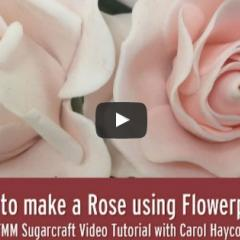 Izdelava vrtnice iz modelirne mase